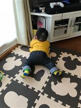家の中で楽しめの巻