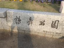 鶴舞公園の桜🌸