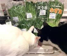 京より野菜届く