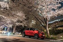 夜桜撮影に行ってきました