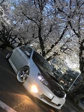 4月から新スタート!!!