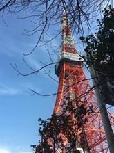 ミッドタウンの桜・・・(^^♪