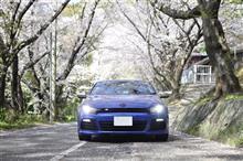 桜舞い散る学校の坂道