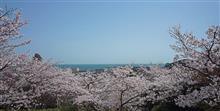 No.128 白野江植物公園 & 小倉城