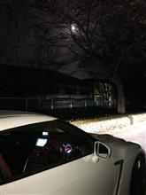 夜桜見学から洗車