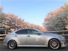 満開の桜を背景に愛車を撮影しました