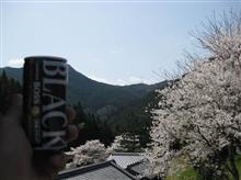 桜ツーリング♪