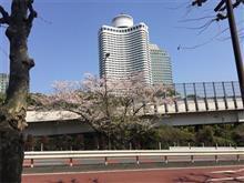 天気が良くて一駅歩いた。