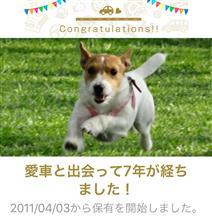 愛犬と出会って7年!