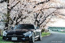 桜撮影行ってきました~