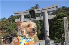桜咲く小国神社へ