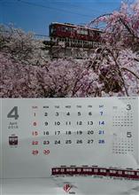 4月になりました 🌸