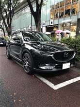 いよいよ~ 来週 熊本へ 。。。