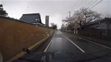 GoProで花見