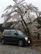 春なのに(^^;