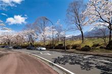 桜ツーリング2018【富士山麓編】