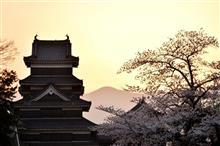 開花をもとめて♪ 「松本城 (長野県松本市)」 180403