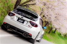 桜 & WRX STI