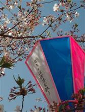 花(桜)より団子(拉麺と野菜)ツアー
