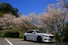 春のチーバ緑活♪(後編)