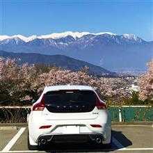 高遠桜から岩村の「半分、青い?」散歩旅