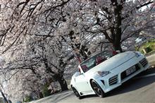 桜とフェアレディZ撮影会 2018年4/1(日)
