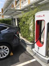 海外の電気自動車事情