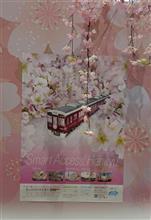 桜と阪急電車🌸🌸今年は成功!