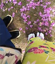 そうだ 桜の京都もいってみよー