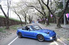 桜とダブル入学