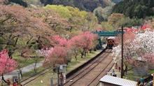 わたらせ渓谷鐵道 神戸駅花桃まつりに行ってきました♪(=゚-゚)ノニャーン♪