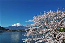 富士山と桜と青空と・・・