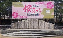 悠久山🗻『桜まつり🌸』花見に行ってきたよ☺