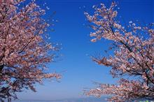 3月の写真です^^