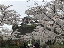 涌谷 桜まつり🌸