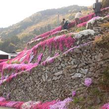 【MoveCUSTOMでおでかけ】吉野川市美郷 高開の石積み