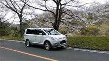 ふらっとお出かけ→桜満開!