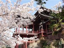 桜満開の尾道・鞆の浦ツアー2018~その2