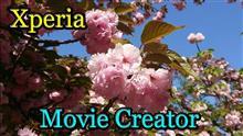 2018大阪造幣局の🌸桜の通り抜け (Xperia Movie Creator)