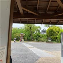 ◆ランニング中の雨。。。岡崎城で雨宿り中です