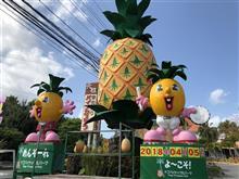 沖縄旅行2018~ナゴパイナップルパーク。