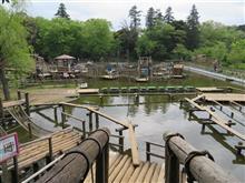 4回目の清水公園