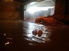 「伊香保温泉 雨情の湯 森秋旅館」の温泉