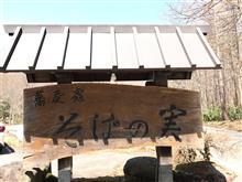 そば三昧、天ぷら三品、大ざるそば、天ぷら五品  戸隠  そばの実