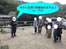 乳搾り体験テスト! (`・ω・´)キリッ