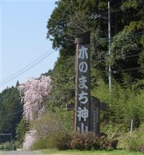 神山さくら道