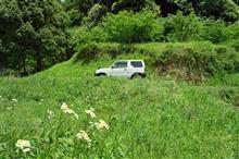 新緑の里山道