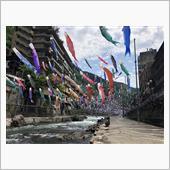 杖立温泉鯉のぼり祭