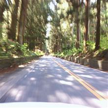 日光杉並木ドライブ