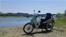 ベトナムからの緑のさざ波2